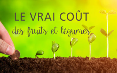 Le vrai coût des fruits et légumes